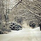 Snow Covered Road by Susan S. Kline