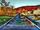Peninsula Tracks  by Marcia Rubin