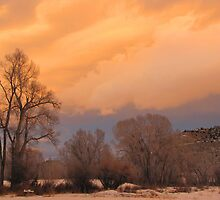 January Sky 1 by BlueSage