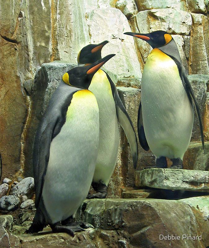 Penguins - Montreal Quebec by Debbie Pinard