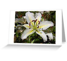 i am lily hear me roar! Greeting Card