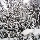 A home's winter wonderland by Poete100