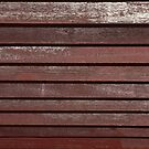 roof log lines by Ryan Bird