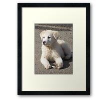 What's That ? Framed Print