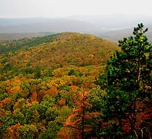 Arkansas Ozarks Rolling Hills by NatureGreeting Cards ©ccwri