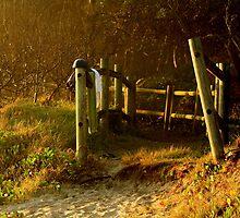 Early Morning skinny dipper by myraj