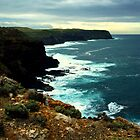 discovery bay national park by hurky