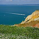 Alum Bay from West High Down by Rod Johnson