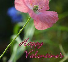 Poppy Notecard-  Happy Valentine's Day! by Diana Graves Photography