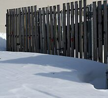 Fence In Snow by Riddick4x5