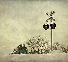 Crossing Over by Evelina Kremsdorf