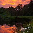 Sunset over Potomac Pond by Murph2010