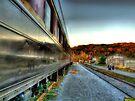 Last Train  by Marcia Rubin