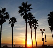 Palm trees in a colorful sunset by Svetlana Day