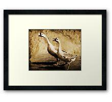 Gabbing Geese Go Walking (Art & Poetry) Framed Print