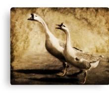 Gabbing Geese Go Walking (Art & Poetry) Canvas Print