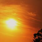 BUSHFIRE SUNSET by Marinapallett