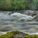 Aysgarth Upper Falls by VoluntaryRanger