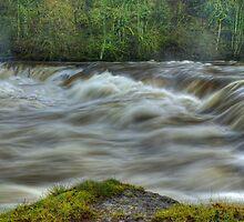 Aysgarth Upper Falls by Jamie  Green