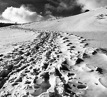 Footsteps in the snow by kumari