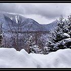 Winter Wonder by DIANE KLEVECKA