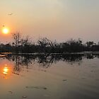 Botswana sunset by Yool