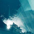 bluepool_b by codswollop