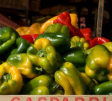 Colourful Capsicums by claire-virgona