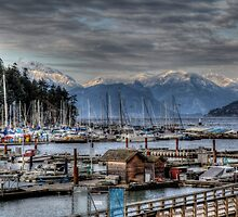 Horseshoe Bay by Wendi Donaldson