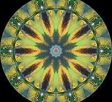 Christmas Beetle Kaleidoscope by fantasytripp