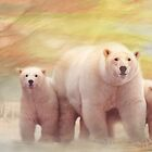 Arctic Summer by Trudi's Images