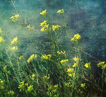 Water Weeds by Cathy  Walker