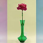 Flower in vase triptych by Martyn Franklin