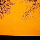 Teardrop on the Fire by Mandy Kerr