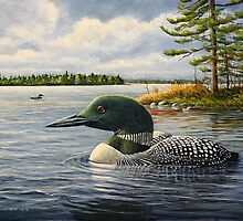 """Loon On The Roseway"" by Frank Boudreau"