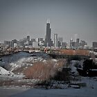 City of Chicago Skyline  by jbsphotography