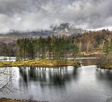 A Day In The Lakes....Tarn Hows by Jamie  Green