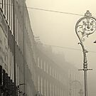 Foggy Harcourt Street by Esther  Molin