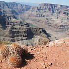 Grand Canyon by rico78