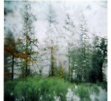 the rain the snow. Photographic Print