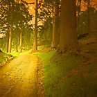 FOLLOW THE YELLOW BRICK ROAD by leonie7
