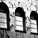 Decay by David Mellor
