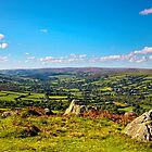 Widdecombe Valley from Bell Tor Dartmoor UK by James  Key
