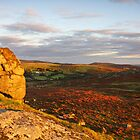 Saddle Tor to Haytor Rocks by James  Key