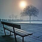 Pale Sun & Bench by kelvinLemur