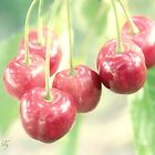 Cherries for you by aMOONy