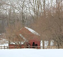 Red Barn in the snow by Éilis  Finnerty Warren