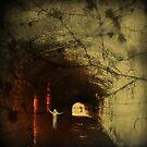Phantom of the Wharf by JacquiK