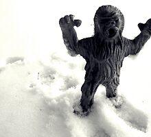02-08-2011 Winter Threatens aka YETI ATACK!!!! by Margaret Bryant