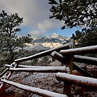 Winter Fence by RondaKimbrow